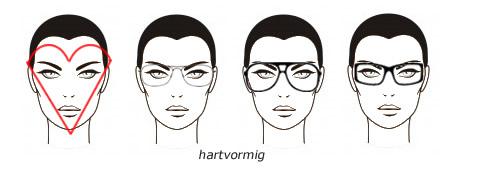 harvormig gezicht brillen